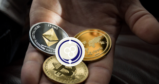 Should Your Company Hold Crypto Assets?